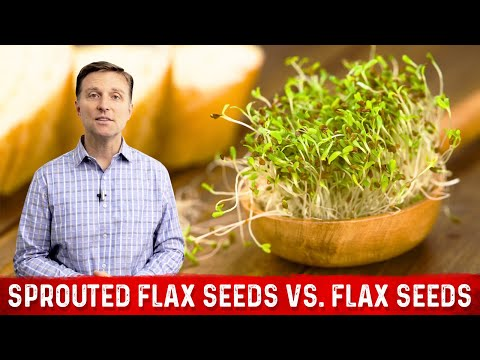 Sprouted Flax Seeds vs. Flax Seeds