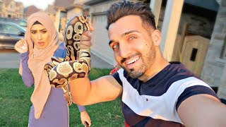 SNAKE PRANK On FROGGY (Jumping Reaction!!)