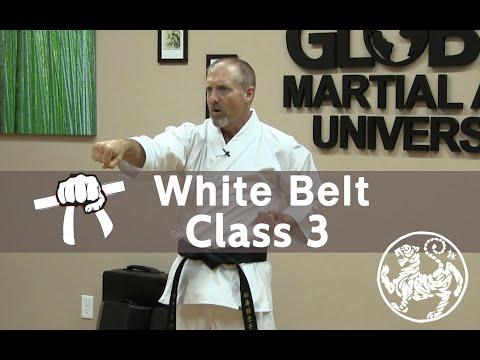 Shotokan Karate Beginner Follow Along Training Class - 9th Kyu White Belt -  Class 3