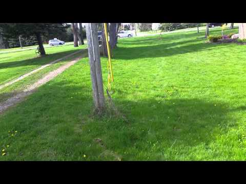 Boundary Survey and property lines staking