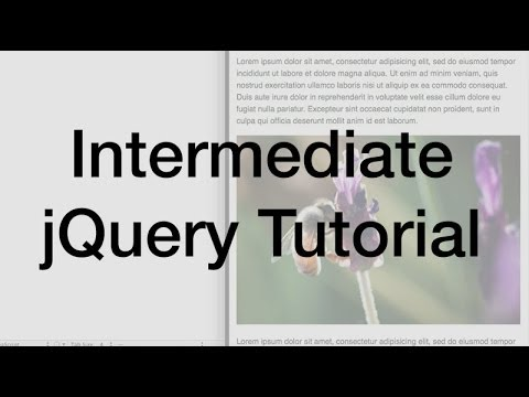 jQuery Variables, Functions, and Conditional Logic Tutorial