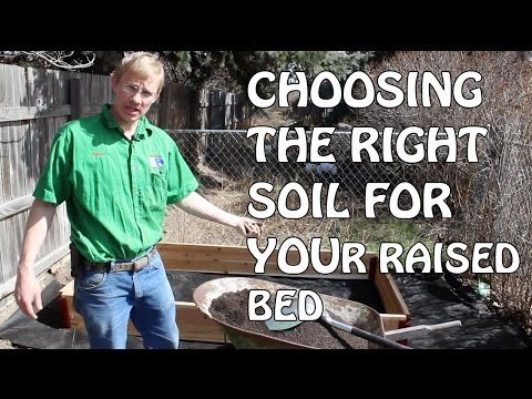 Choosing The Right Soil For Your Raised Bed