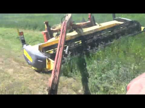 Cutting hay with new holland haybine and case tractor