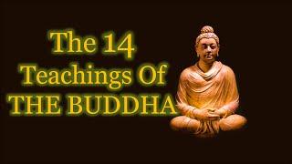 Buddha quotes | The Fourteen Teachings Of The Buddha