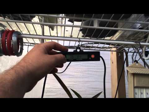 Greenhouse Cooling in hot Weather/ Tips and Tricks to cool my Greenhouse this Summer