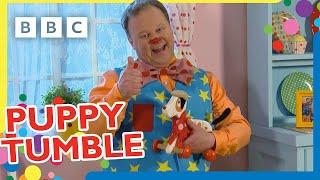 Puppy Tumble Compilation 🐶   Mr Tumble   CBeebies