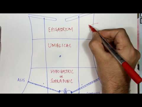 9 Regions of Abdomen made simple