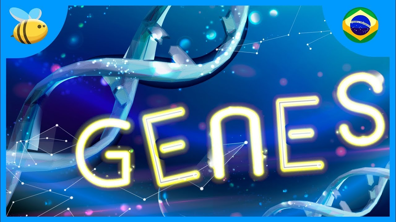 O Qué São Os Genes? | Vídeos Educativos para Crianças