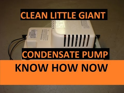 Clean a Little Giant Condensate Pump