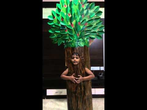Fancy dress of tree