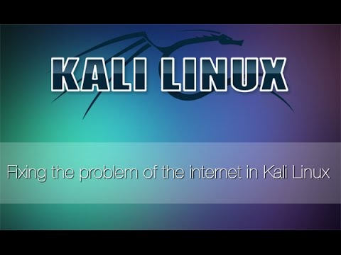 Fixing the problem of the internet on Kali Linux
