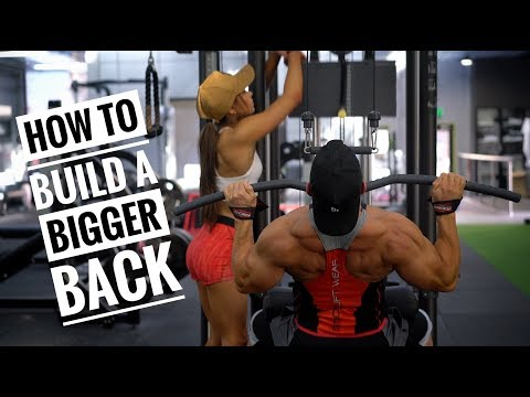 HOW TO BUILD A BIGGER BACK | Training Tips!