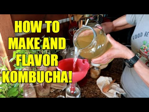 KOMBUCHA FOR DUMMIES ~ HOW TO MAKE AND FLAVOR!
