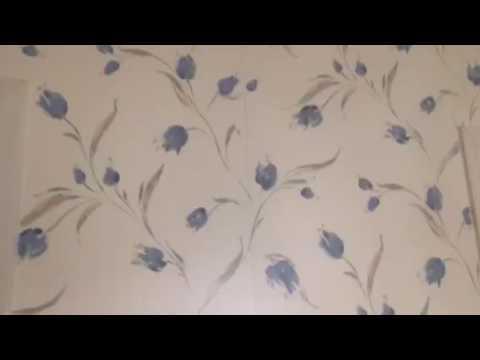 Priming Walls Oil Based Primer After Wallpaper Removal for Texture