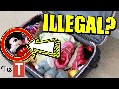 10 Strangest Things NOT Allowed On Airplanes