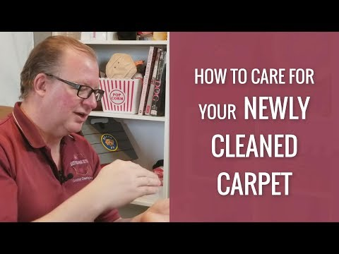 How to care for your newly cleaned carpet by Rendall's Cleaning
