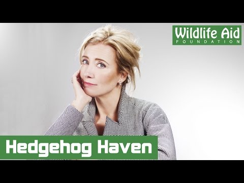 Emma Thompson's Hedgehog Haven!