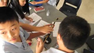 Cooperative Learning in the Science Classroom