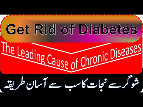 How to Get Rid of Diabetes The Leading Cause of Chronic Diseases I  Diabetes Treatment Tips In Urdu