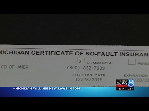 4 new Michigan laws to take effect in 2016
