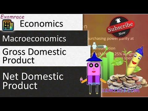 GDP and NDP: Fundamentals of Economics