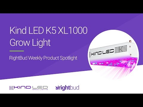 Kind LED K5 XL1000 Full Spectrum Plant LED Grow Light