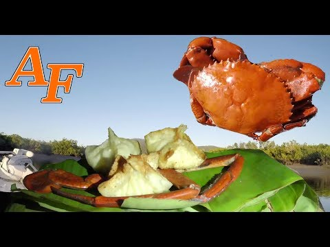 Mud Crab   Catch and Cook   Crab Rangoon Recipe EP.400