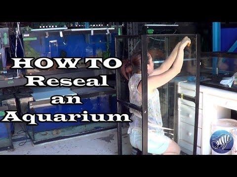 How to Reseal an Aquarium