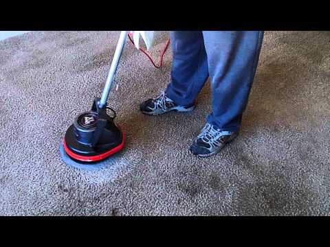 Cleaning Badly Stained Carpet with Oreck Orbiter, Ridgid Wet/Dry Vac, and Grandi Groom Carpet Rake