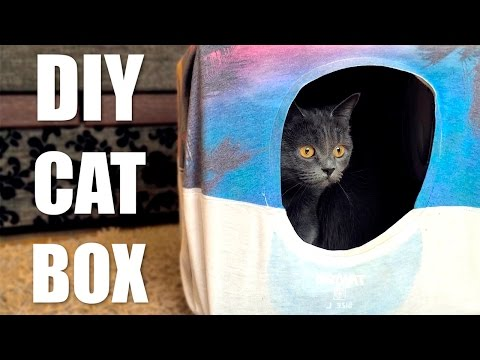 DIY Cat Tent from T-Shirt and Box 😻