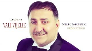 Download VALI VIJELIE - CE SIMT EU HIT 2014 NEK MUSIC PRODUCTION
