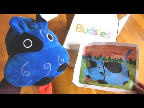 Budsies Custom Plush | Tips | Quality | How Long it Takes | Unboxing Stuffed Animal Review