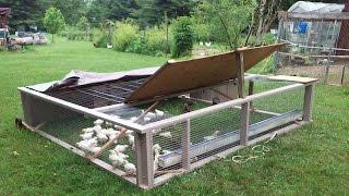 Building A Joel Salatin Style Chicken Tractor