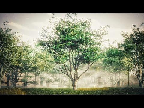 How to Create Realistic Trees : Blender Tutorial