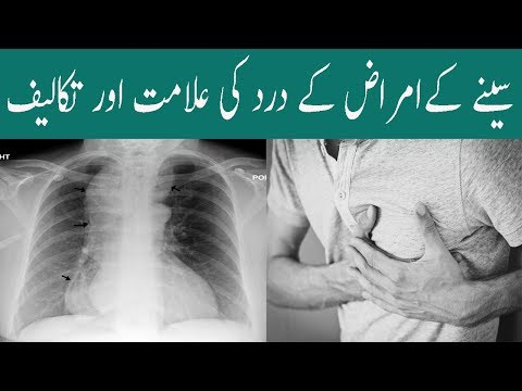 Chest Disease And Symptoms In Urdu Chest Pain Reason In Hindi Seene Ka Dard Ki Waja