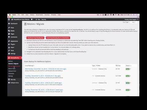 Automatic WordPress Website Backups
