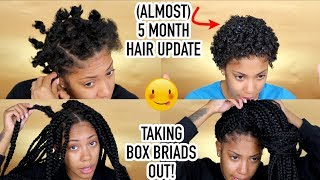 (Almost) 5 Month Hair Update + how I TAKE BRAIDS OUT