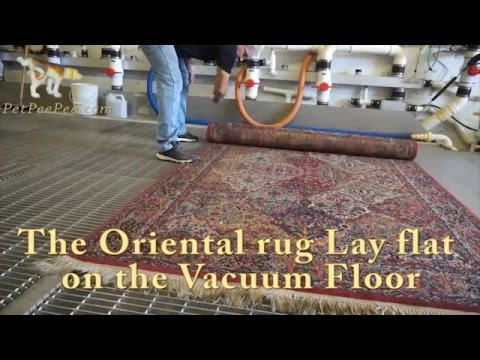 Cleaning Persian Rug By Hand
