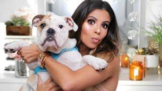 GRWM Chit Chat | My Makeup Line? Friendships? A Puppie?