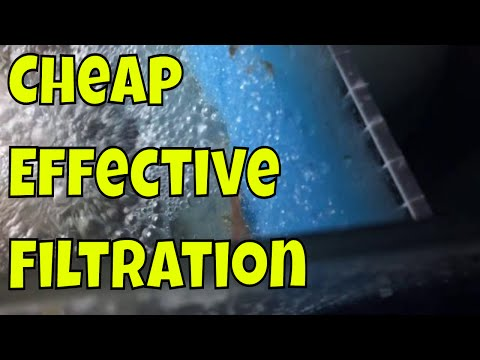 Easy and cheap saltwater tank filtration