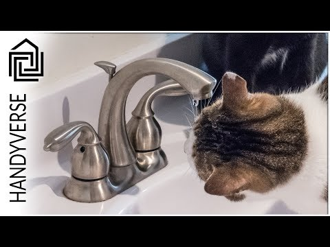 Fixing a Leaky Faucet and Clearing a Slow Drain : EP 019