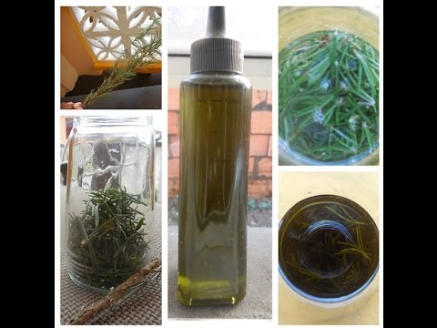 DIY Rosemary Oil || Natural Hair Oil