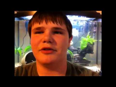 Sexing fish video #1: Oscar