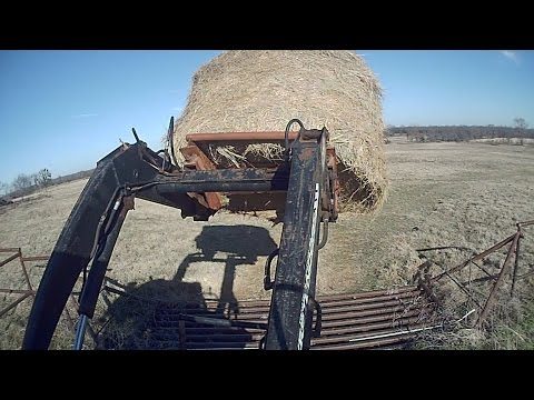 How We Feed Cattle In Winter  Putting Out Hay with A Tractor East Texas