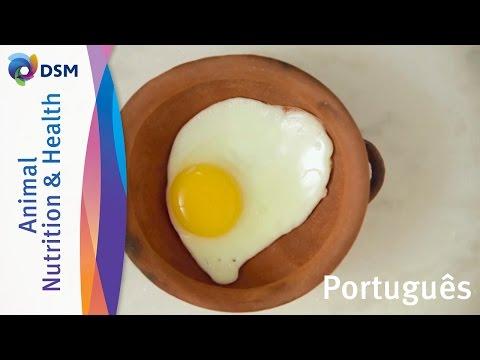 Ovos fazem parte de sua alimentação diária saudável