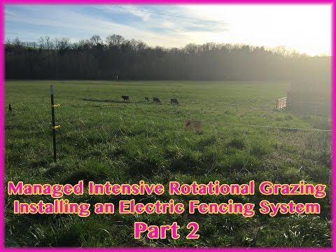 Rotational Grazing Electric Fencing Install - Part 2