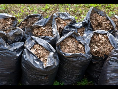 How to Make Compost - Compost Pile Tips