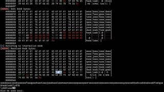 picoCTF 2018 [27] ret2libc Exploits (got 2 learn libc