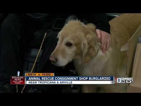 Las Vegas animal rescue group's new thrift shop burglarized - FB