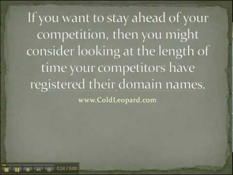 Domain Names and Search Engine Ranking